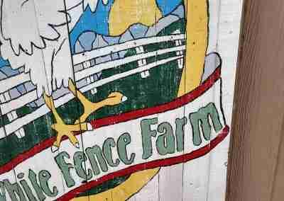 white-fence-farm-05