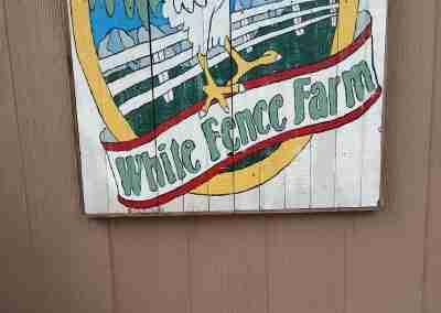 white-fence-farm-06