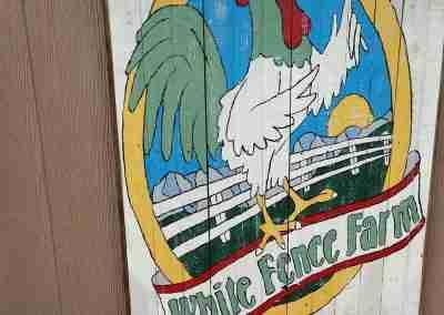white-fence-farm-07